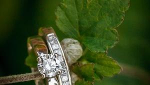 Wedding rings on leaf